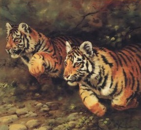 waking-the-tiger